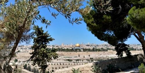Israël, juifs, arabes