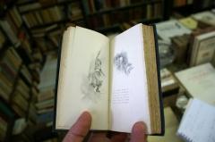 Michel Tournier, littérature, pédophilie