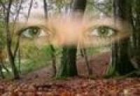 visiion,oeil,peur