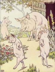 rumeur, cochons, Islam