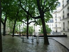 Insulte, bobo parisien, musée