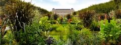 Merveille, jardin des plantes, amours, délices et orgues