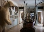 L'ours du Musée de la chasse.jpg